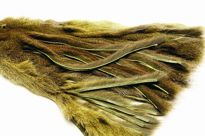 Zonkered Pine Squirrel Skin - Zonkerit - 40500300111 - 8