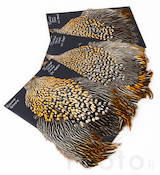 Jungle Cock Cape Bronze Grade -  - 404011000001 - 1