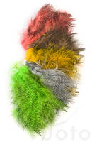 Fine Black Barred Marabou Feathers -  - 40450300507 - 1