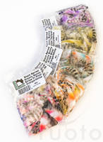 Black Barred Groovy Bunny Strips -  - 40500300008 - 1